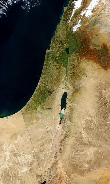Satellite image Israel January 2003
